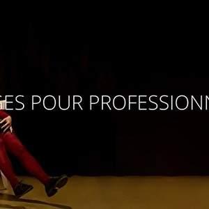 STAGES PROFESSIONNELS - Corps et Théâtralité, l'Art du Mime Corporel