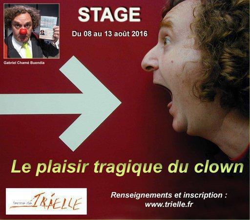 Gabriel Chamé Buendia // Le plaisir tragique du clown