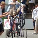 Yoyo le clown et ses vélos rigolos
