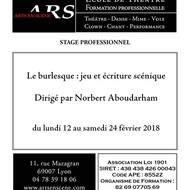 Stage professionnel « Le burlesque : jeu et écriture scénique »