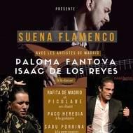 Grand spectacle de FLAMENCO dans le Sud-grenoblois